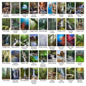 Vertical Aquarium Picture Backgrounds