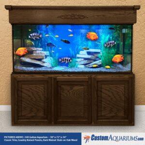"""240 Gallon* Glass Aquarium - 30""""H x 72""""L x 24""""D"""