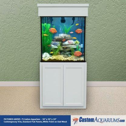 """75 Gallon* Glass Aquarium - 30""""H x 30""""L x 18""""D"""