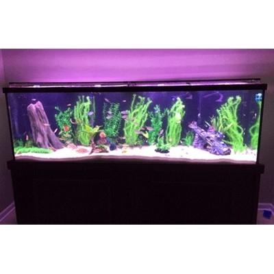 """150 Gallon* Glass Aquarium - 24""""H x 72""""L x 18""""D"""