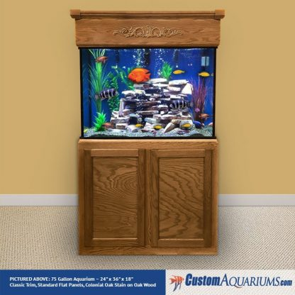 Up to 90 Gallon Maintenance / Decor Package-31308